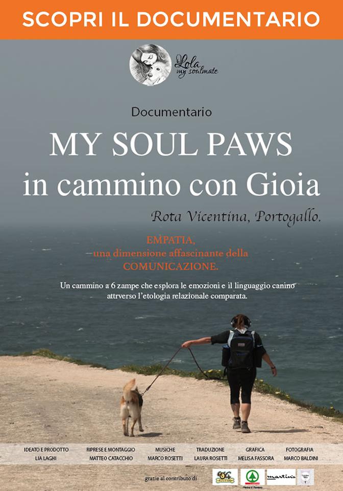 My Soul Paws dvd