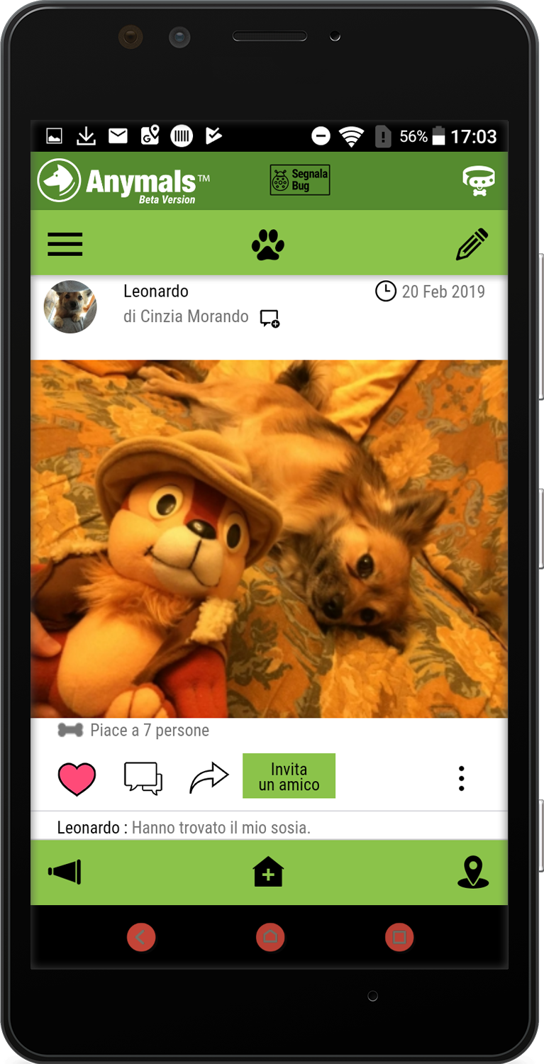 Social Wall: stay connected with other pets lovers